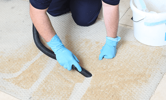 How often do your carpets need cleaning by professionals