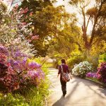 Best places to take a spring walk in Manchester 5