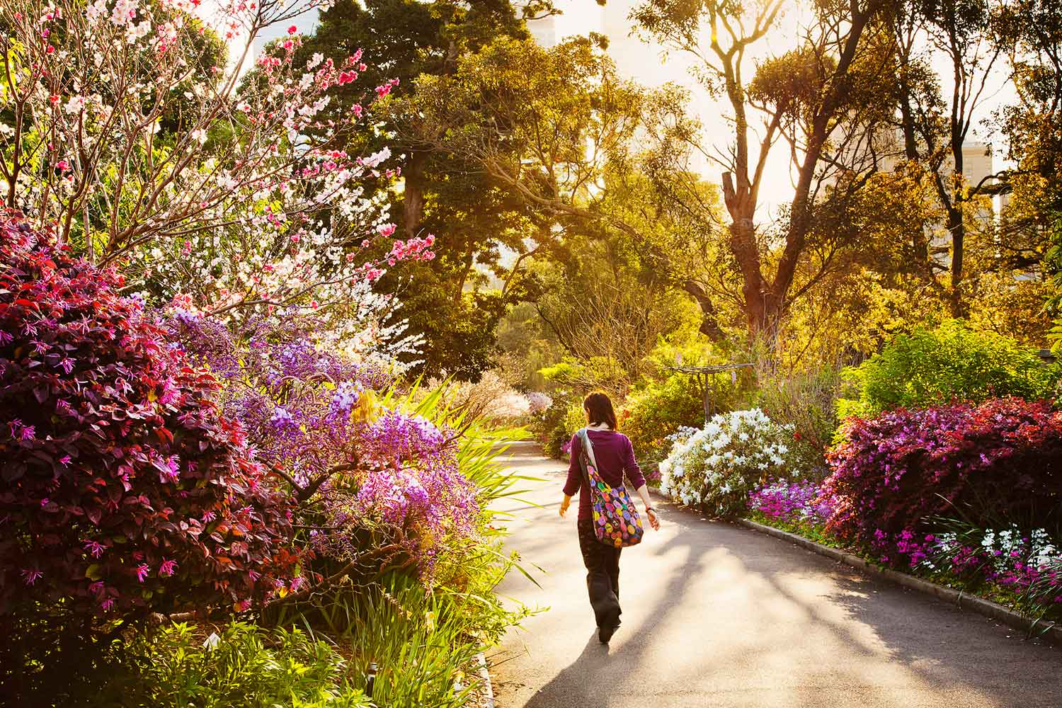 Beautiful Places To Take A Spring Walk In Manchester